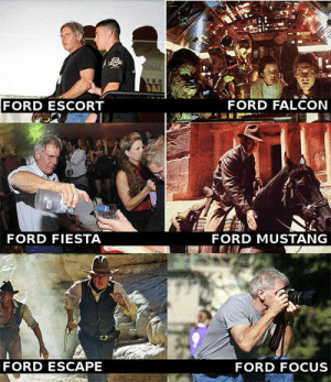 *Ford intensifies*: FORD ESCORT  FORD FALCON  FORD FIESTA  FORD MUSTANG  FORD ESCAPE  FORD FOCUS *Ford intensifies*