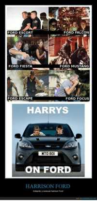 Harrison Ford Memes And Falcons Falcon Fiesta Mustang