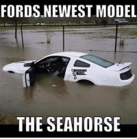 FORDS NEWEST MODEL  ECHANIC  THE SEAHORSE