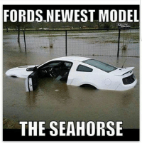 FORDS NEWEST MODEL  THE SEAHORSE lol nowinwhite mustangmeme mustang mistake