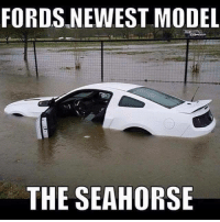FORDS NEWEST MODEL  THE SEAHORSE Shots fired. Car Throttle Muscle