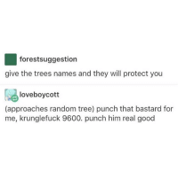 Life, Memes, and Girl: forestsuggestion  give the trees names and they will protect you  a! loveboycott  (approaches random tree) punch that bastard for  me, krunglefuck 9600. punch him real good I need to have a Q & A with a straight girl so I can ask her all my questions about life as a straight person