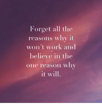 Work, Reason, and All The: Forget all the  reasons why it  won't work and  believe in the  one reason wnv  it will.