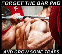 Memes, Trap, and Trapping: FORGET THE BAR PAD  @DEADLIFTTIL  AND GROW SOME TRAPS It's a trap 😉 - Credit @deadlifttillimdead