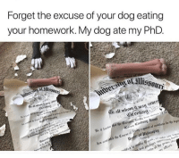 Memes, Omg, and Homework: Forget the excuse of your dog eating  your homework. My dog ate my PhD  cetint  o all whow it an ruucr  Hreetii  b e  e it  hat the Curators, havng bees nouis  d the Course of Suay reqguirrd of cmbidatrs for the degn  ied to recein  in  re of the prop i Omg! 😂