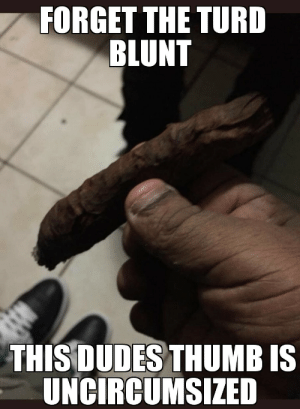 Meme, Tumblr, and Blog: FORGET THE TURD  BLUNT  THIS DUDES THUMB IS  UNCIRCUMSIZED awesomesthesia:  Meme oclock