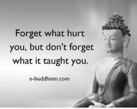 Buddhism: Forget what hurt  you, but don't forget  what it taught you.  e-buddhism com