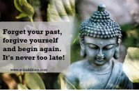 Memes, Buddhism, and Never: Forget your past,  forgive yourself  and begin again.  It's never too late!  www.e-buddhism com