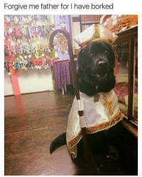 Forgive Me Father For I Have Borked