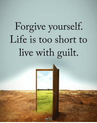 Life, Memes, and Live: Forgive yourself.  Life is too short to  live with guilt Tag someone who needs to read this. Forgive yourself. Life is too short to live with guilt. positiveenergyplus