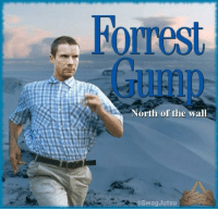 Forrest Gump: Forrest  Gump  North of the wall  @SwagJutsu