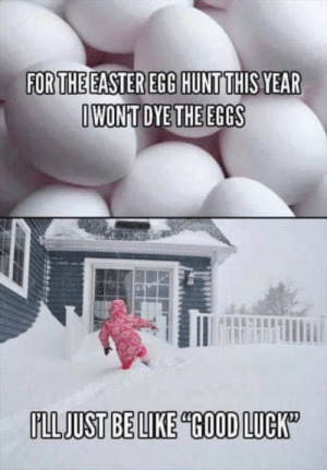 This winter has been a harsh one...: FORTHE EASTER EGG HUNTTHIS YEAR  IWONT DYE THE EGGS  FLLJUST BE LIKE GOOD LUCK This winter has been a harsh one...