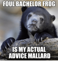 Mainly because Actual Advice Mallard is just basic common sense. Toenails do make good toothpicks...: FOUL BACHELOR FROG  IS MY ACTUAL  ADVICE MALLARD  imgflip.com Mainly because Actual Advice Mallard is just basic common sense. Toenails do make good toothpicks...