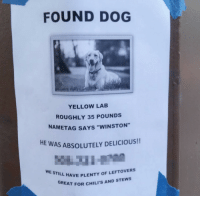 "Chilis, Dog, and Still: FOUND DOG  YELLOW LAB  ROUGHLY 35 POUNDS  NAMETAG SAYS ""WINSTON""  HE  AS ABSOLUTELY DELICIOUS!!  WE STILL HAVE PILIS  L HAVE PLENTY OF LEFTOVERS  REAT FOR CHILI'S AND STEWS"