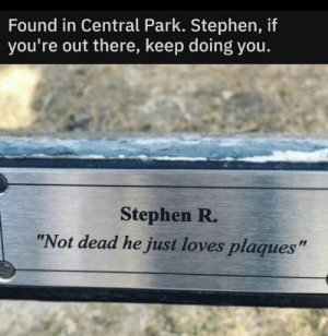 "https://t.co/BKNpioJQBq: Found in Central Park. Stephen, if  you're out there, keep doing you.  Stephen R.  ""Not dead he just loves plaques"" https://t.co/BKNpioJQBq"