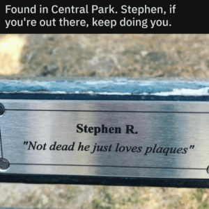 "awesomacious:  You do you Stephen R.: Found in Central Park. Stephen, if  you're out there, keep doing you.  Stephen R.  ""Not dead he just loves plaques"" awesomacious:  You do you Stephen R."