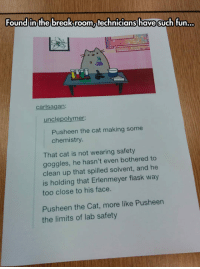 Pusheen, Cat, and Fun: Found in the breakroom technicians have such fun  carlsagan  unclepolymer:  Pusheen the cat making some  chemistry  That cat is not wearing safety  goggles, he hasn't even bothered to  clean up that spilled solvent, and he  is holding that Erlenmeyer flask way  too close to his face.  Pusheen the Cat, more like Pusheen  the limits of lab safety <p>Making Some Chemistry.</p>