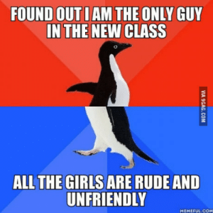 Girls, Rude, and How To: FOUND OUT I AM THE ONLY GUY  IN THE NEW CLASS  ALL THE GIRLS ARE RUDE AND  UNFRIENDLY  MEMEFUL.COM Any suggestions on how to handle this semester?