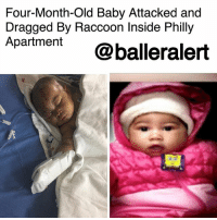 "Crying, Family, and Memes: Four-Month-Old Baby Attacked and  Dragged By Raccoon Inside Philly  Apartment  t @balleralert Four-Month-Old Baby Attacked and Dragged By Raccoon Inside Philly Apartment – blogged by @MsJEnnyb ⠀⠀⠀⠀⠀⠀⠀ ⠀⠀⠀⠀⠀⠀⠀ Earlier this week, tragedy struck in Philadelphia after a raccoon attacked a four-month-old girl inside her Philly home. ⠀⠀⠀⠀⠀⠀⠀ ⠀⠀⠀⠀⠀⠀⠀ According to the Los Angeles Times, the baby's mother, Ashley Rodgers, was taken her older son to the bathroom, as the baby slept on a bed. When she returned, she found her daughter on the floor, covered in blood. ⠀⠀⠀⠀⠀⠀⠀ ⠀⠀⠀⠀⠀⠀⠀ ""We heard a sound upstairs, and we see a raccoon run down the steps,"" Rodgers told reporters. ""When I finally got to her, she was laying on the floor, so it had dragged her off the bed, across the room and she was bleeding and crying, and her whole face was red."" ⠀⠀⠀⠀⠀⠀⠀ ⠀⠀⠀⠀⠀⠀⠀ The little baby was quickly transported to a local hospital for treatment. Upon arrival, she received over 60 stitches and a rabies shot and is now expected to recover. ⠀⠀⠀⠀⠀⠀⠀ ⠀⠀⠀⠀⠀⠀⠀ Since then though, Animal Care and Control has cased the area, as well as the building and has yet to find the raccoon. The team has even set traps but the raccoon has yet to be caught. As a result, the family, who just moved into the apartment this week, will not return to their unit."