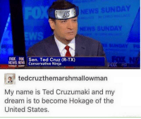 News, Ted, and Ted Cruz: FOX. ,FOX,  NEWS NEWS  Sen. Ted Cruz (R-TX)  Conservative Ninja  SUNDAY SUDAY  g tedcruzthemarshmallowman  My name is Ted Cruzumaki and my  dream is to become Hokage of the  United States.
