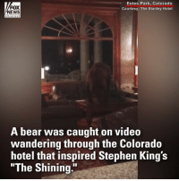 "The hotel that inspired @stephenking's ""The Shining"" got a scary, and very real, visitor recently. A bear was able to pry open the @thestanleyhotel's door and took a walk through the lobby while hundreds of guests were asleep last week. No damage was done and the bear reportedly saw itself out.: FOX  NEWS  Estes Park, Colorado  Courtesy: The Stanley Hotel  A bear was caught on video  wandering through the Colorado  hotel that inspired Stephen King's  ""The Shining."" The hotel that inspired @stephenking's ""The Shining"" got a scary, and very real, visitor recently. A bear was able to pry open the @thestanleyhotel's door and took a walk through the lobby while hundreds of guests were asleep last week. No damage was done and the bear reportedly saw itself out."