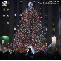 Memes, New York, and News: FOX  NEWS  New York, NY  Photo Credit: Gary Hershorn 'Tis the season! Take a look at New York City during the most wonderful time of year. 🎄