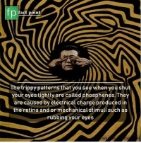 Tried it? 👀: fp  fact point  The trippy patterns that you see when you shut  your eyes tightly are called phosphenes. They  are caused by electrical charge produced in  the retina and or mechanical stimuli such as  rubbing your eyes  SO Tried it? 👀