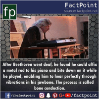 Memes, Beethoven, and Genius: fp  FactPoint  source: factpoint.net  After Beethoven went deaf, he found he could affix  a metal rod to his piano and bite down on it while  he played, enabling him to hear perfectly through  vibrations in his law bone·The process Is called  bone conduction.  f  /thefactpoint C  AO G+ / factpoint Genius 🤓