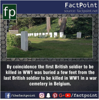 Belgium, Facts, and Friends: fp  FactPoint  source: factpoint.net  By coincidence the first British soldier to be  killed in WW1 was buried a few feet from the  last British soldier to be killed in WW1 in a war  cemetery in Belgium. Fact sources mentioned at www.FactPoint.net- did you know fact point , education amazing dyk unknown facts daily facts💯 didyouknow follow follow4follow earth science commonsense f4f factpoint instafact awesome world worldfacts like like4ike tag friends Don't forget to tag your friends 👍