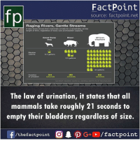 Memes, Time, and 🤖: fp  FactPoint  source: factpoint.net  Raging Rivers, Gentle Streams  A new study shows that mammals urinate for a remarkably similar  length of time, regardless of body size and bladder capacity.  Great Dane  dog  Bison  African  0.4 gallons  5.5 gallons  42 gallons  24  20  The law of urination, it states that all  mammals take roughly 21 seconds to  empty their bladders regardless of size. What's your timing?😂
