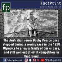 Fact sources mentioned at www.FactPoint.net- did you know fact point , education amazing dyk unknown facts daily facts💯 didyouknow follow follow4follow earth science commonsense f4f factpoint instafact awesome world worldfacts like like4ike tag friends Don't forget to tag your friends 👍: fp  FactPoint  source: factpoint.net  The Australian rower Bobby Pearce once  stopped during a rowing race in the 1928  Olympics to allow a family of ducks pass,  and still won out of eight competitors in  that round Fact sources mentioned at www.FactPoint.net- did you know fact point , education amazing dyk unknown facts daily facts💯 didyouknow follow follow4follow earth science commonsense f4f factpoint instafact awesome world worldfacts like like4ike tag friends Don't forget to tag your friends 👍