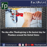 Memes, Thanksgiving, and United: fp  FactPoint  source: factpoint.net  The day after Thanksgiving is the busiest day for  Plumbers around the United States  f  AO G+ / factpoint  /thefactpoint O
