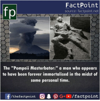 """Memes, Forever, and Time: fp  FactPoint  source: factpoint.net  The """"Pompeii Masturbator:"""" a man who appears  to have been forever immortalised in the midst of  some personal time.  /thefactpoint O"""