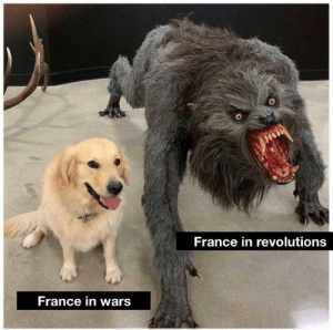 Memes, Waves, and France: France in revolutions  France in wars * vigorously waves white britches on stick* via /r/memes https://ift.tt/2CVKH5M