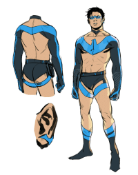 Target, Tumblr, and Bikini: francisxie:nightwing but skimpy bikini outfit