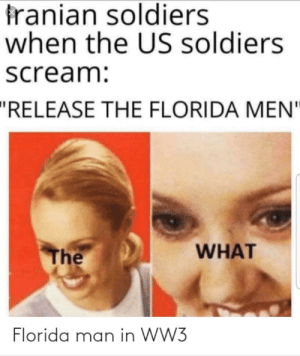 "Someone please make a video of WWIII like the simulations: franian soldiers  when the US soldiers  scream:  ""RELEASE THE FLORIDA MEN""  WHAT  The  Florida man in WW3 Someone please make a video of WWIII like the simulations"