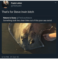 conflicted bc poor sea ravioli :( but steve irwin :'(: Frank Lotion  @702Austin  That's for Steve Irwin bitch  Nature is Scary @TheScaryNature  Something took two clean bites out of this poor sea ravioli  2  6:14 PM 01 Oct 18 conflicted bc poor sea ravioli :( but steve irwin :'(
