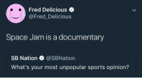 me irl: Fred Delicious  @Fred_Delicious  Space Jam is a documentary  SB Nation @SBNation  What's your most unpopular sports opinion? me irl
