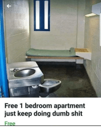 Dumb, Shit, and Free: Free 1 bedroom apartment  just keep doing dumb shit  Free Free place for everyone!