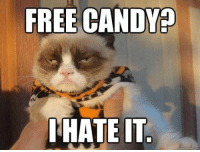 Candy, Funny, and Halloween: FREE CANDY?  HATE IT Happy Hallow-NO!  #Halloween # Halloween Memes # Funny Memes # Grumpy cat # cat memes