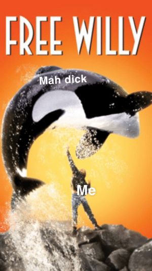 THE TIME IS ALMOST AT HAND: FREE WILLY  Mah dick  Me THE TIME IS ALMOST AT HAND