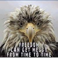 Memes, Messi, and Time: FREEDOM  CAN GET MESSY  FROM TIME TO TIME Cold Dead Hands
