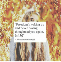 "Freedoms: ""Freedom's waking up  and never having  thoughts of you again.  (via mytenwordstoryig)"