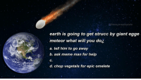 epic decision time https://t.co/wP3M2sdQOk: @freesurrealestate  earth is going to get strucc by giant egge  meteor what will you do¿  a. tell him'to go away  b. ask meme man for help  C.  d. chop vegetals for epic omelete epic decision time https://t.co/wP3M2sdQOk