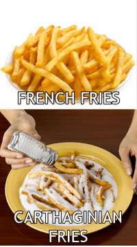 Rough Roman: FRENCH FRIES  RTHAGINIA  FRIES