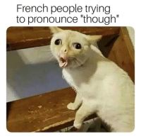 French: French people trying  to pronounce though""