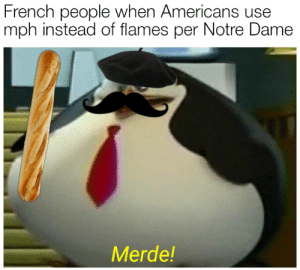 : French people when Americans use  mph instead of flames per Notre Dame  Merde!