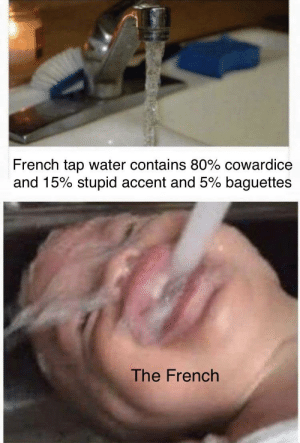 Circa 1940 (colorized): French tap water contains 80% cowardice  and 15% stupid accent and 5% baguettes  The French Circa 1940 (colorized)