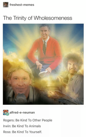 Animals, Dank, and Memes: freshest-memes  The Trinity of Wholesomeness  alfred-e-neuman  Rogers: Be Kind To Other People  Irwin: Be Kind To Animals  Ross: Be Kind To Yourself. Too much goodness in this pic.. by somu69 MORE MEMES