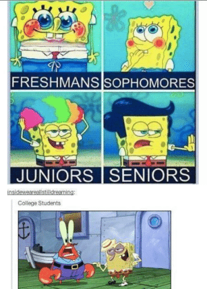 This is scarily accurate: FRESHMANS SOPHOMORES  JUNIORS SENIORS  insideweareallstilldreaming:  College Students This is scarily accurate